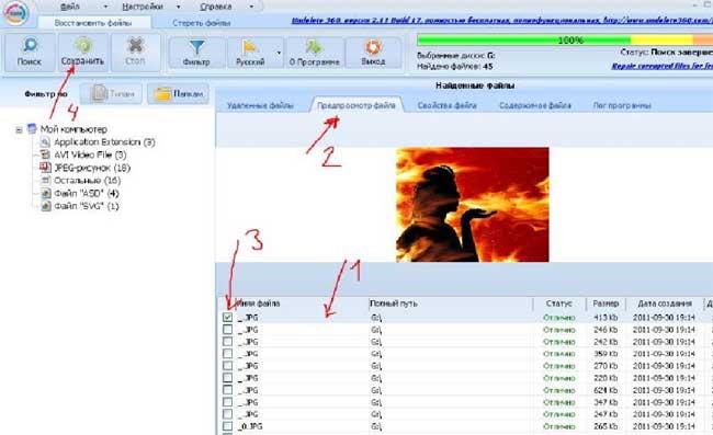 Вид интерфейса программы